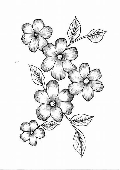 Para Dibujos Flowers Tela Bordar Mano