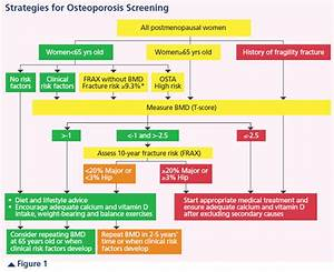 Screening for Osteoporosis in Women - Singapore Health ...