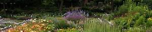 Pflanzen Sonniger Standort : staudeng rtnerei zinser gartenpflanzen aus ~ Lizthompson.info Haus und Dekorationen