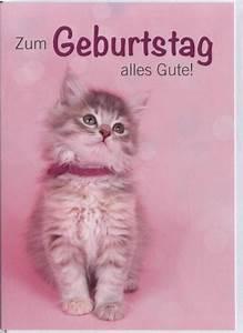 Katze Kotzt Viel : geburtstagskarte tiere katze zum geburtstag alles gute doppelkarten ~ Frokenaadalensverden.com Haus und Dekorationen