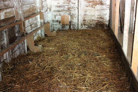 pelleted bedding chicken coop bedding using pelleted shavings make it