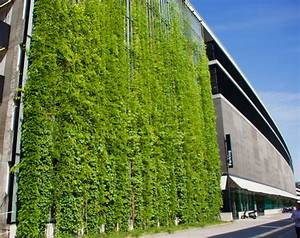 Green, Walls, To, Adorn, Business, School, U2013, The, University, Times