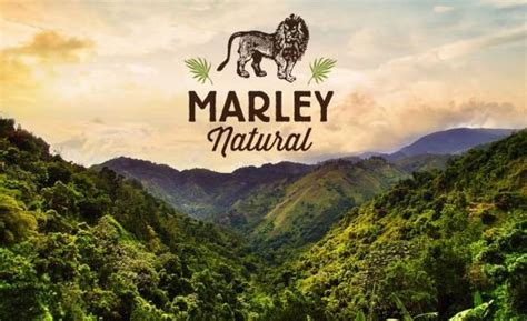 marley natural  weed  manages  sell   bob