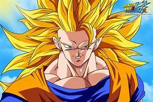 Goku Super Saiyan 3 - Dragon Ball Z Photo (38357471) - Fanpop