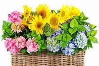 pictures of flower arrangements Types of Flower Arrangement