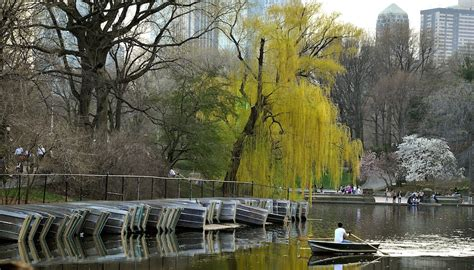 Paddle Boating Central Park Nyc by How To Get Out On The Water In Nyc Rivers Lakes
