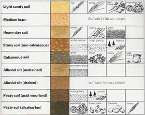 The six soil types Images - Frompo