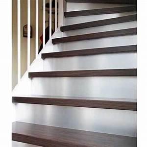 Renovation Marche Escalier : kit de r novation contremarches en alu lapeyre id e ~ Premium-room.com Idées de Décoration