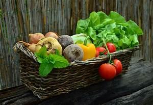 Basket, Of, Fruits, And, Vegetables, Image, -, Free, Stock, Photo, -, Public, Domain, Photo