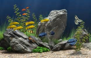 Arowana Fish Tank Decoration by Picture Record 6 1 10