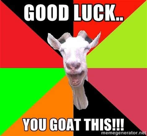 Funny Good Luck Memes - good luck you goat this goats meme generator messages encouragement pinterest