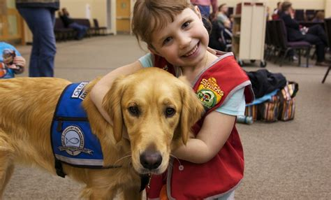lcc comfort dogs comfort ministry lord of