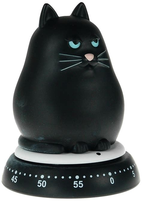 cat kitchen accessories  cooking fun  conscious cat
