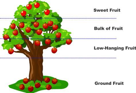 hanging fruits andik taufiq