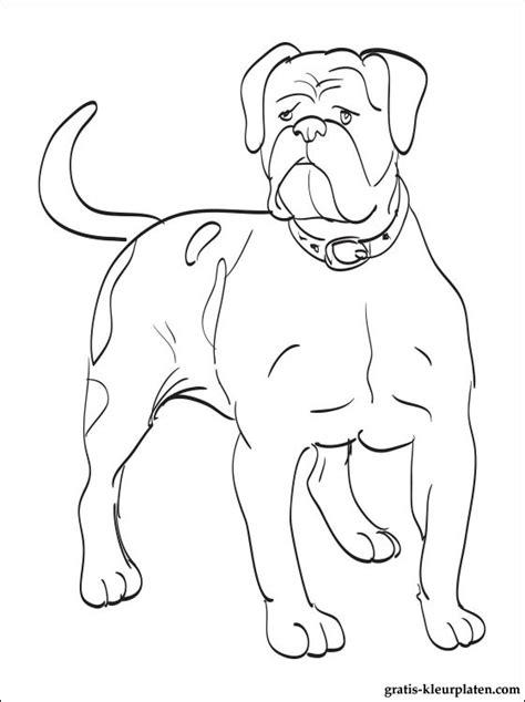 Amerikaanse Bulldog Kleurplaat by Kleurplaat Amerikaanse Buldog Gratis Kleurplaten