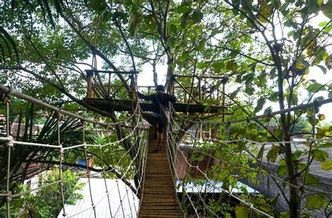 asyiknya menikmati rumah pohon bukit lemped mongabaycoid