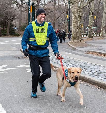 Guide Dogs Half Nyc Tails Toys Tail