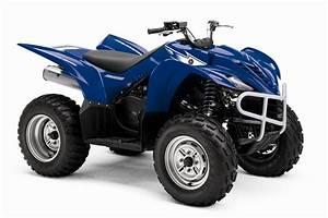 2007 Wolverine 350 2wd