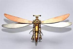 Mechanisoptera Percutio