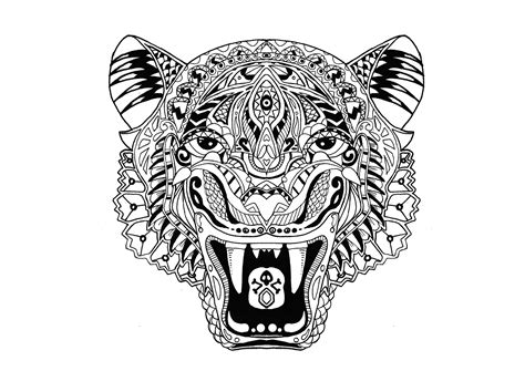 tiger tigers adult coloring pages