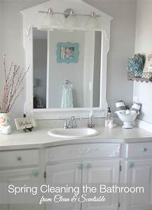 Spring cleaning the bathroom clean and scentsible for Spring clean bathroom
