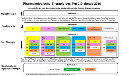 therapie des diabetes mellitus typ  diabetes news