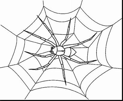 Spider Coloring Web Pages Halloween Spiders Christmas