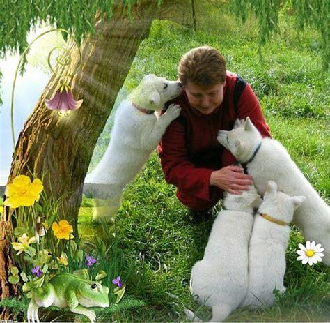 Ziegenmilch Für Hunde