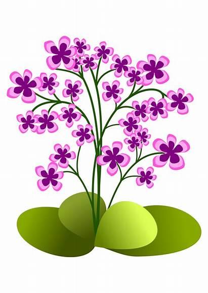 Clipart Flowers Flower Clip Garden Blomster Tegninger