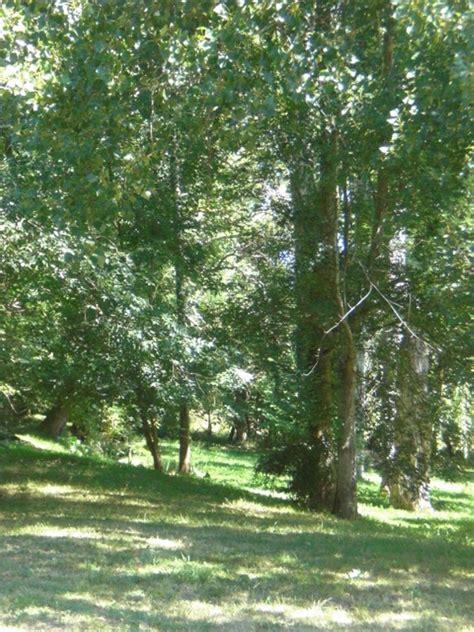 chambres d hotes agen gîte n 884001 moulin de cabalé à bajamont dans le lot et