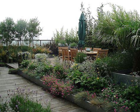 plants for rooftop gardens roof garden plants home decor report