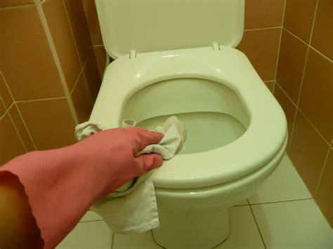 les toilettes le moment de v 233 rit 233 la maison de marthe
