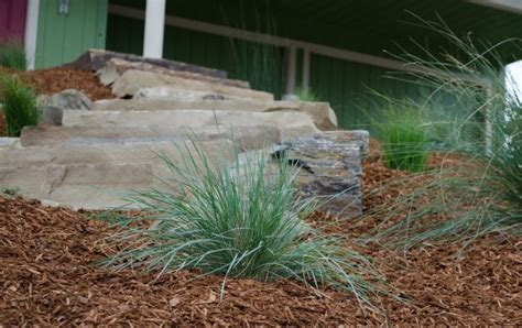 landscaping companies prices how much does landscaping cost greener environments
