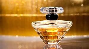 Parfum Per Rechnung : parfum auf rechnung kaufen ratgeber rund um das thema ~ Themetempest.com Abrechnung