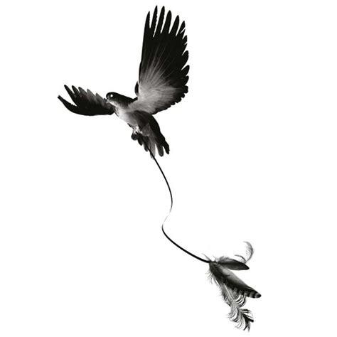 Tatouage éphémère Oiseau Plumes