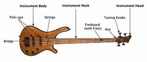 Guitar Parts Diagram Electric
