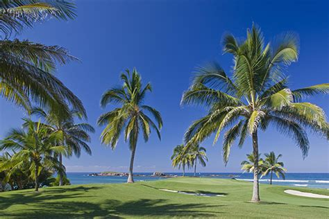 An Insider's Guide To The Punta Mita Gourmet & Golf ...