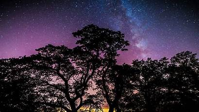 Galaxy Stars Trees Desktop Backgrounds Wallpapers Background