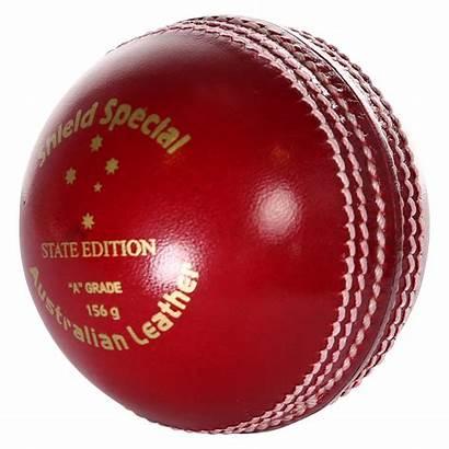 Cricket Ball Balls Australian Match Sport Sports