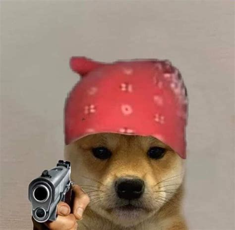 Dogwifhat Renegade Raider Dog