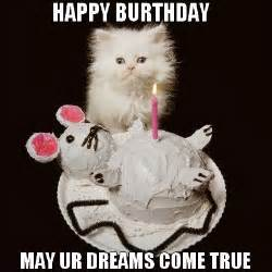 happy birthday cats 25 best ideas about cat happy birthday meme on