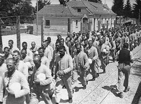 World War 2 Holocaust Concentration Camps
