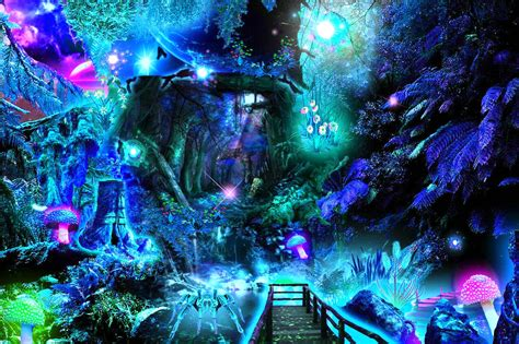 Beautiful Magical Wallpaper by Magic Forest Wallpaper And Background Image 1280x853