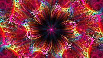 Fractal Flower Colorful Bright 1080p Fhd Abstraction