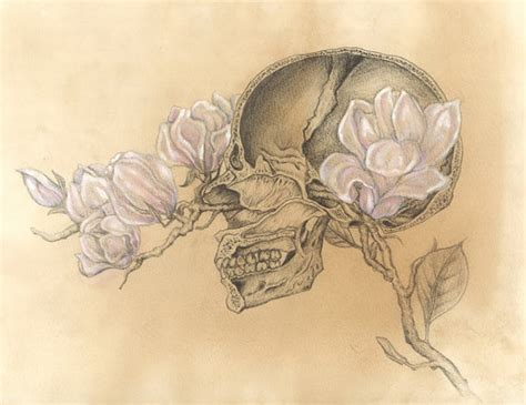 Illustration Art Hand Heart Skull Skeleton Anatomy Ribcage