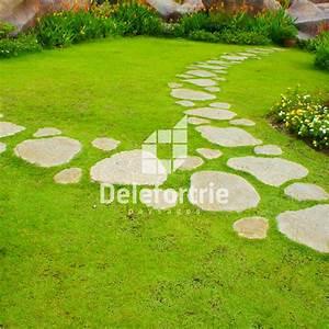 Allées De Jardin : am nager une all e de jardin pas japonais pour vos ~ Dode.kayakingforconservation.com Idées de Décoration
