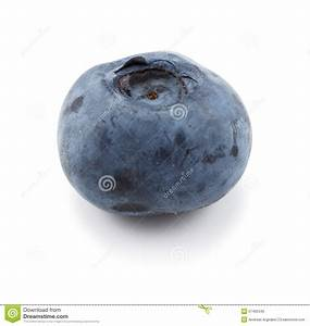 One Single Blueberry Against A White Background Stock ...