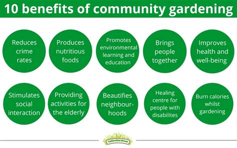 benefits of community gardens how to set up a community garden cultivation