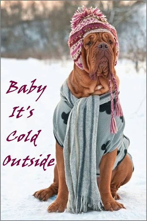 Baby Its Cold Outside Cold Outside Pinterest Its Cold And Babies