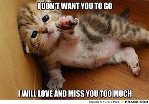 I DON'T WANT YOU TO GO... - Helpless Kitten Meme Generator ...
